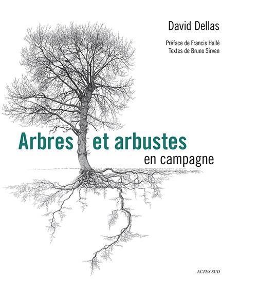 arbres et arbustes en campagne – Agroforesterie